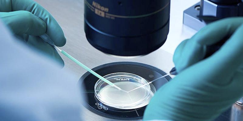 embriones vitrificados gijon